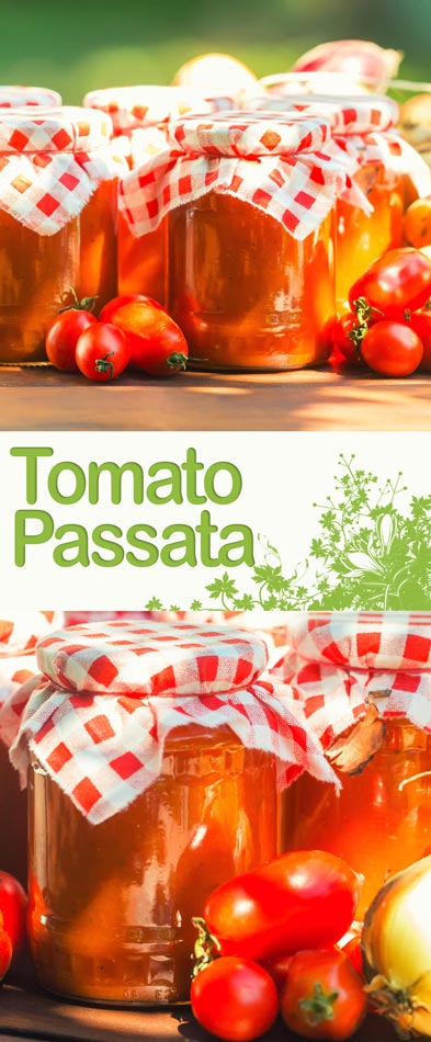 A tomato passata is the perfect way to preserve a glut of tomatoes and makes the perfect base for a host of stews and soups!