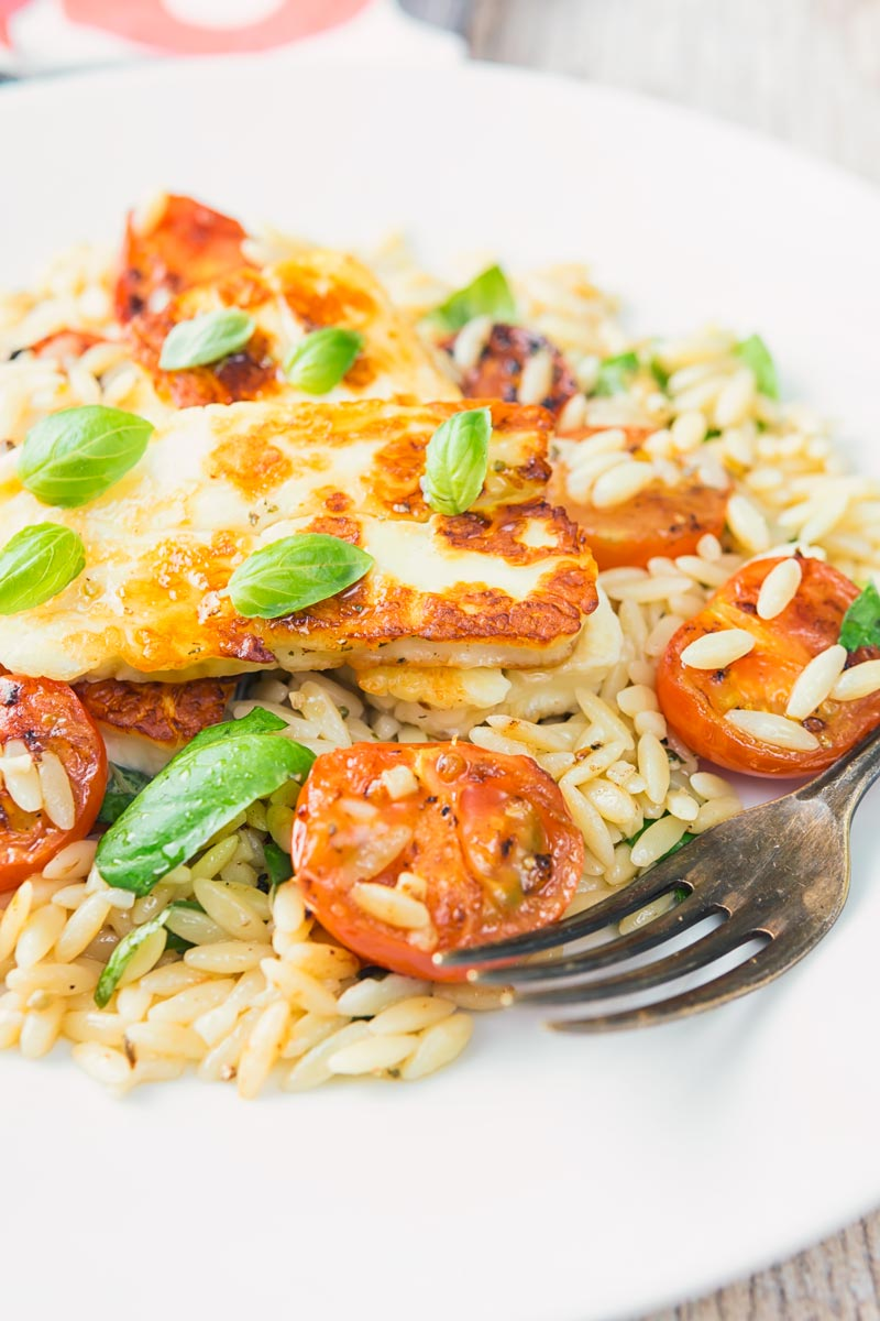 Fried halloumi cheese on an orzo salad with seared tomatoes and basil