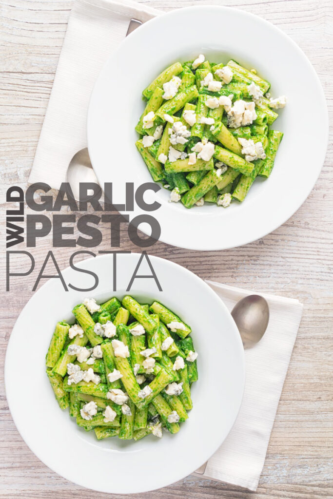 Portrait overhead image of wild garlic pesto pasta using rigatoni pasta garnished with gorgonzola cheese served in two wide white bowls with text