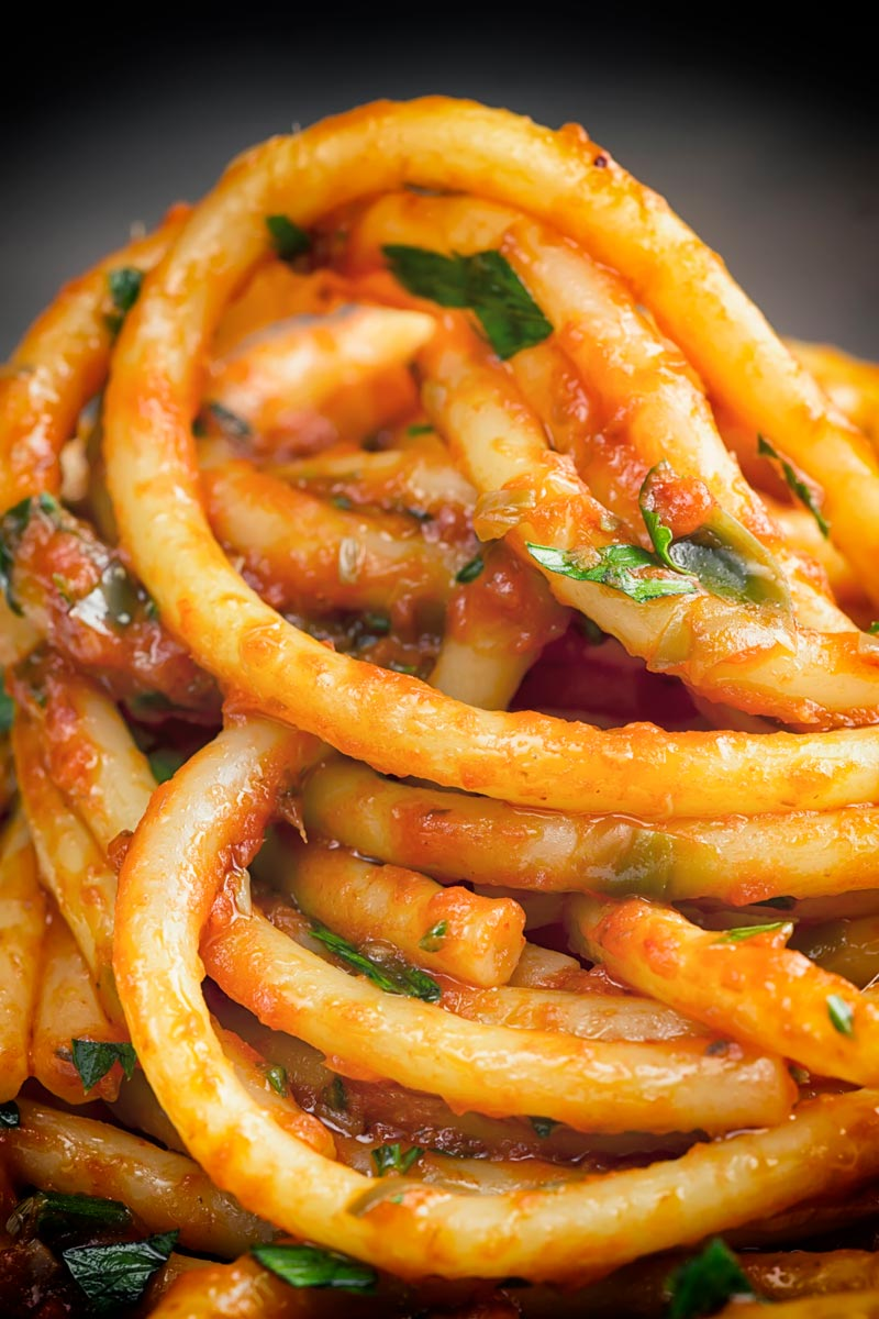 Portrait close up image of Bucatini pasta in a tomato sauce