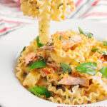 Portrait image of a fork of salmon pasta taken from a bowl featuring tomatoes and, fresh basil leaves and breadcrumbs with text overlay