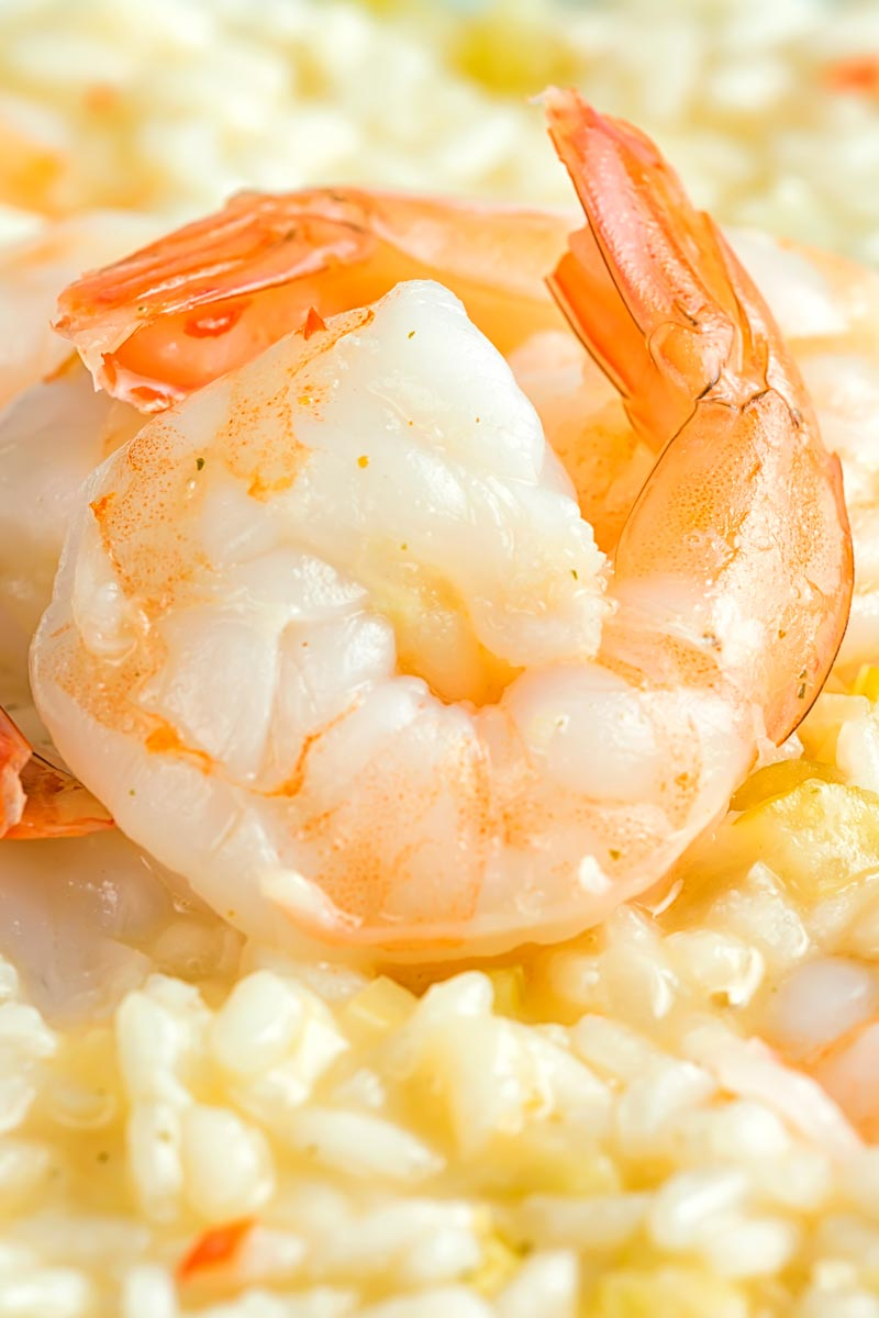 Close up portrait image king prawns served on a lemon and chilli risotto