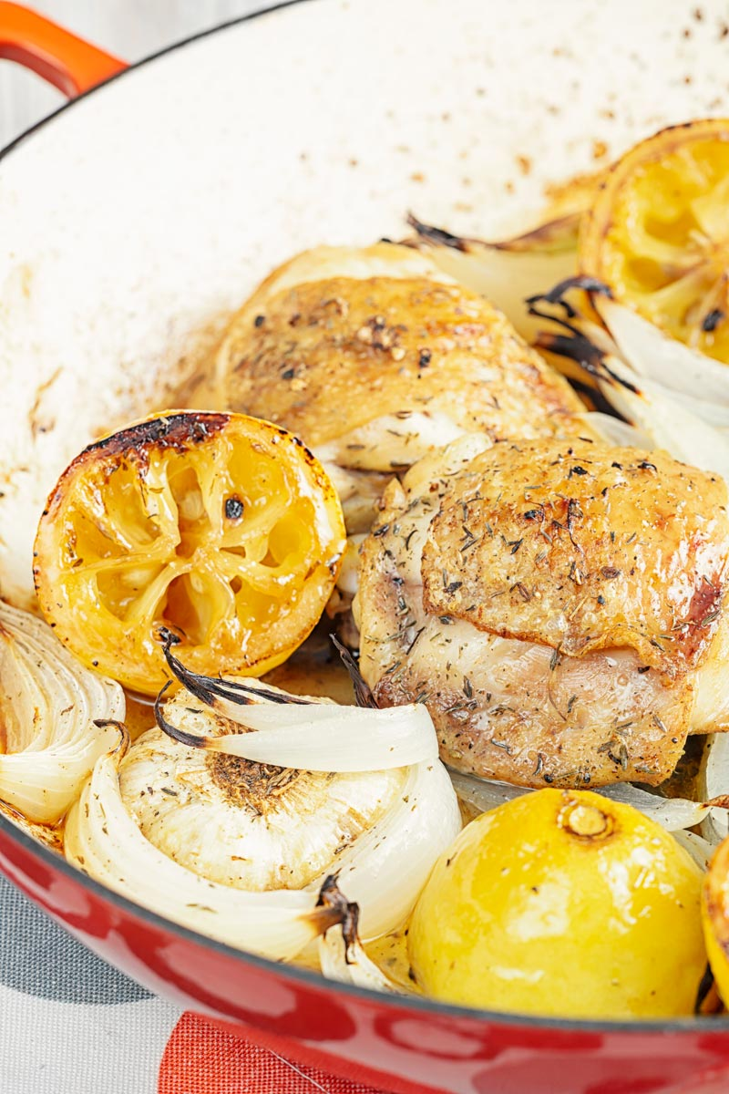 Portrait close up image of chicken thighs cooked with onion lemon and garlic in an enamel cast iron pot