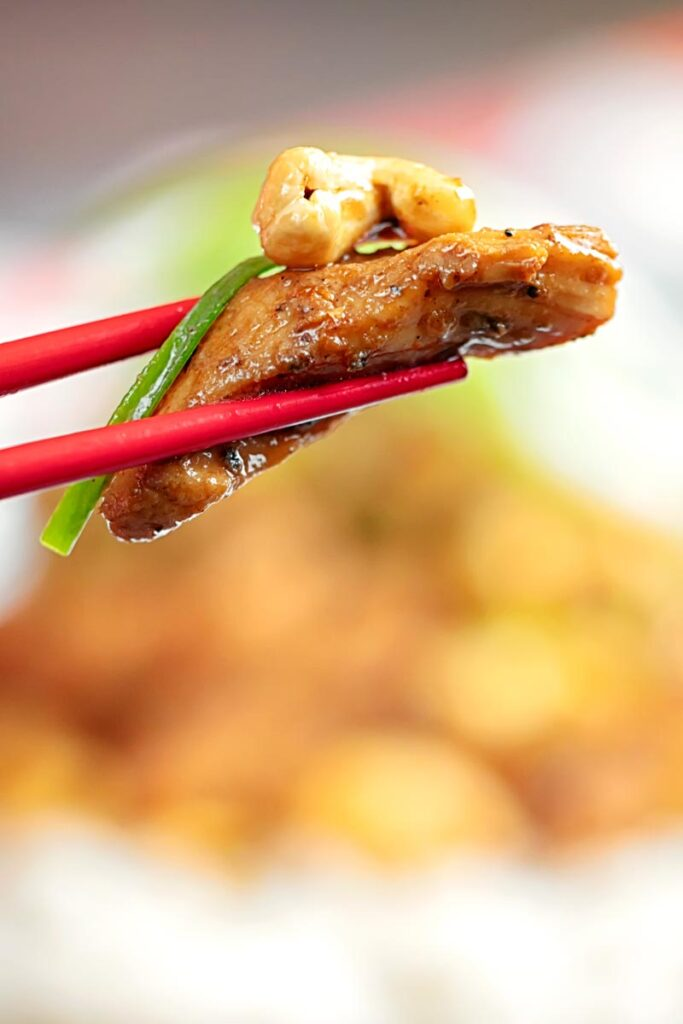 Close up portrait image of stir fried chicken with cashew nut and spring onions
