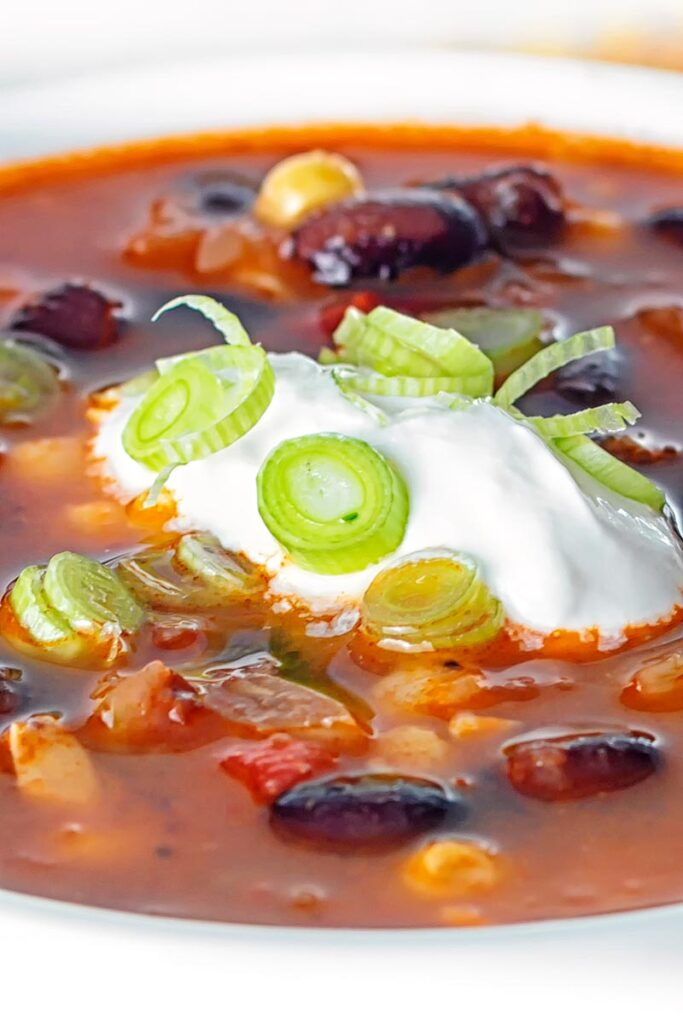 Portrait close up image of a vegetarian black bean soup served in a white bowl with sour cream and green onions