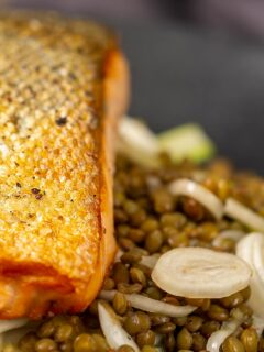 Portrait Close up image of a crispy skinned pan seared salmon fillet served on a black plate with lentils and fennel