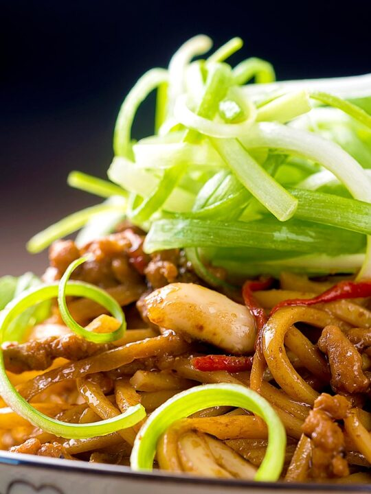 Portrait close up image of dan dan noodles, a Chinese stir fried minced pork recipe served with a spring onion garnish