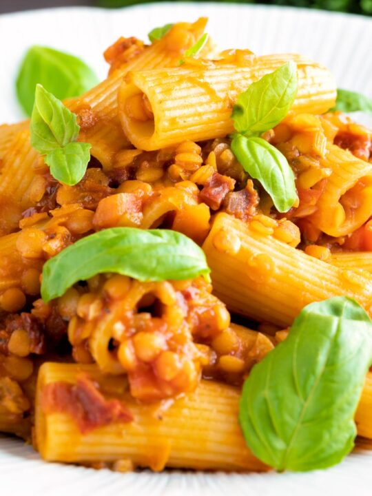 Close up of a red lentil ragu or bolognese served with rigatoni pasta.