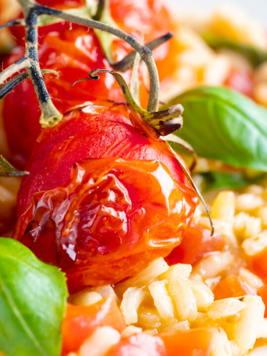 Close up tomato risotto with basil and roasted tomatoes.