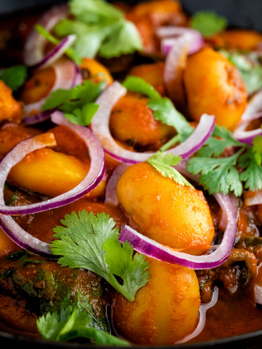 Close up Indian butter bean curry served with coriander and red onion.