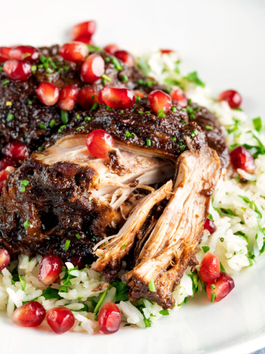 Iranian fesenjan chicken thigh stew with pomegranate showing cooked meat texture.