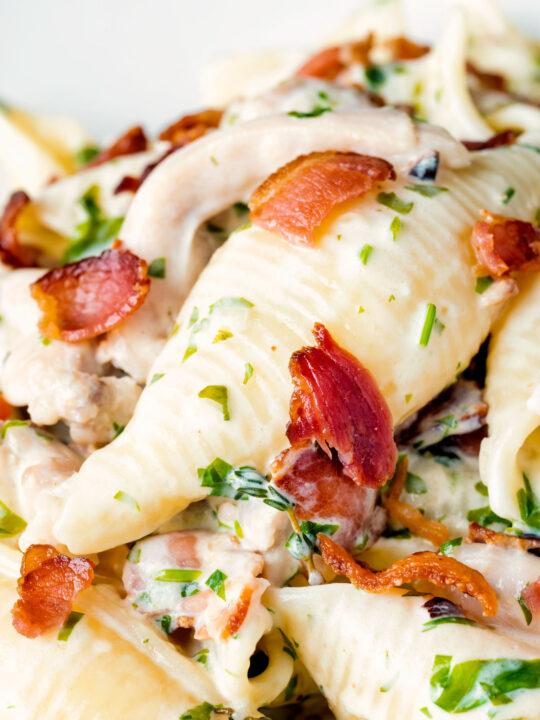 Close up creamy chicken and bacon pasta.